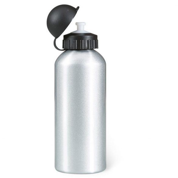 Sticla de apa 600 ml, Everestus, 20IAN1485, Argintiu, Metal