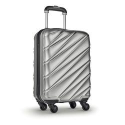 Troler cu carcasa rigida, plastic, Everestus, TR12, argintiu mat