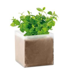 "Compost cu seminte ""MINT"", materiale multiple, beige"