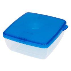 Caserola pentru pranz cu pastila de racire, Everestus, CAE29, plastic, albastru, saculet sport inclus