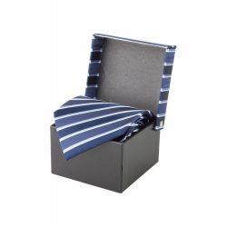 Cravata, 1520×100 mm, Andre Philippe by AleXer, 20FEB4324, Matase, Albastru, Albastru