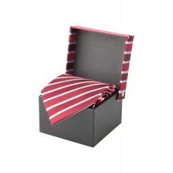 Cravata, 1520×100 mm, Andre Philippe by AleXer, 20FEB4323, Matase, Rosu, Rosu